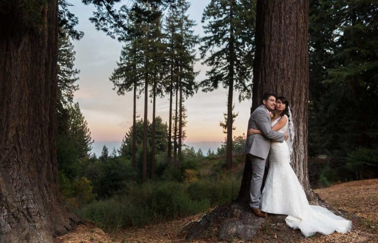 Bride and Groom Posing in Trees with View of Mountains and Bay