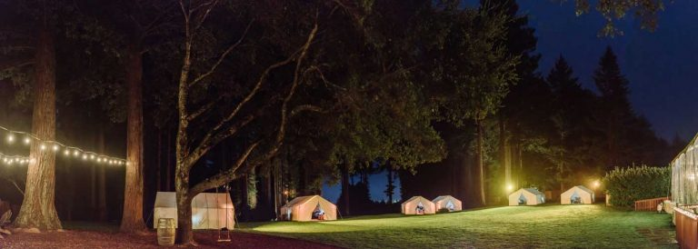 Camping in tents under lights on grounds of The Mountain Terrace